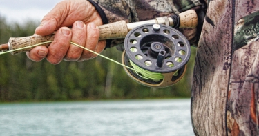 Hunting & Fishing Licenses